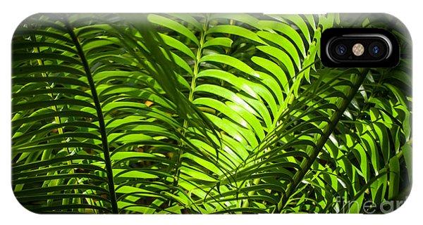 Illuminated Jungle Fern IPhone Case
