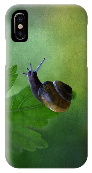I'm Not So Fast IPhone Case
