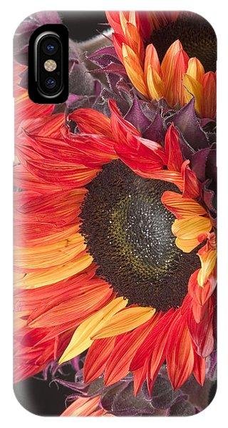 Imagination - Sunflower 01 IPhone Case