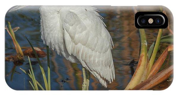 Immature Little Blue Heron IPhone Case