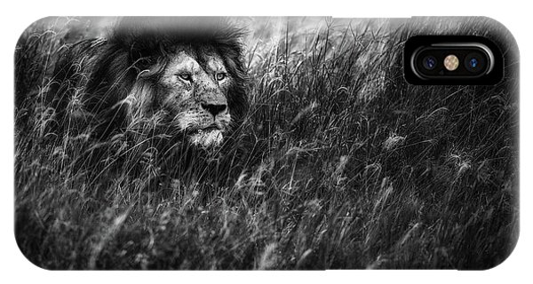 Lion iPhone Case - Immortal by Mohammed Alnaser