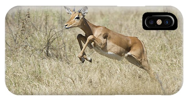 Impala Leaping Through Savanna Phone Case by Richard Berry