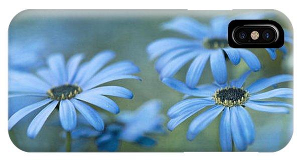 Blue iPhone Case - In A Corner Of A Garden by Priska Wettstein