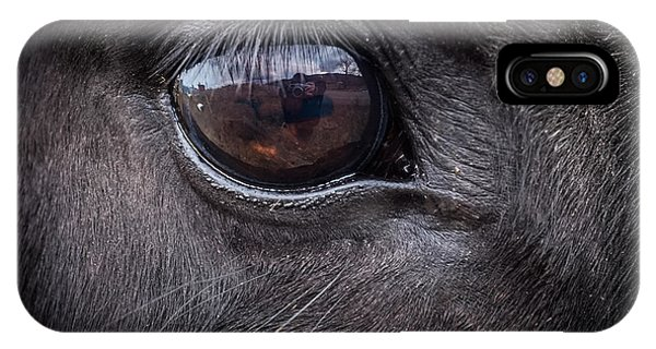 In A Horse's Eye IPhone Case