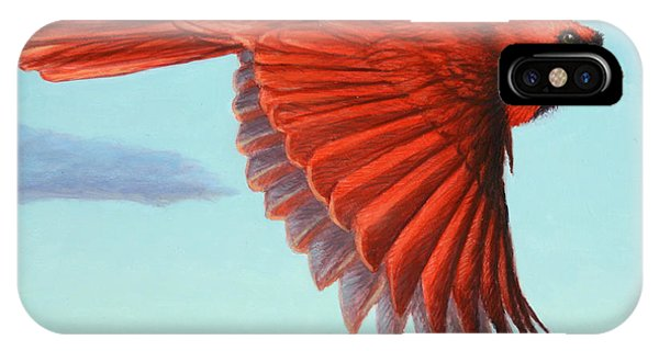 Cardinal iPhone Case - In Flight by James W Johnson