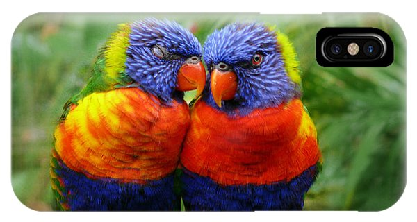 In Love Lorikeets IPhone Case