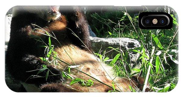 Wildlife Er iPhone Case - In Need Of More Sleep. Er Shun Giant Panda Series. Toronto Zoo by Ausra Huntington nee Paulauskaite