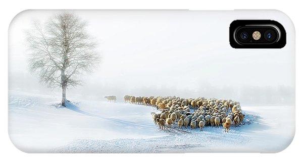 Birch Tree iPhone Case - In Snow by Hua Zhu