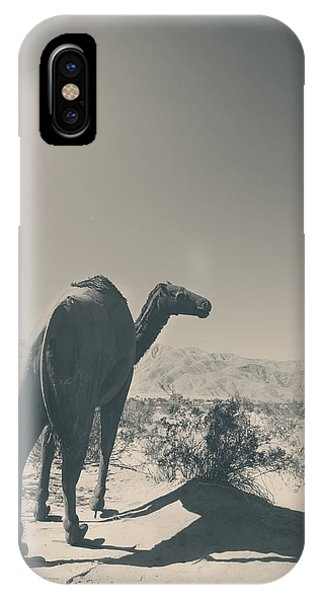 In The Hot Desert Sun IPhone Case