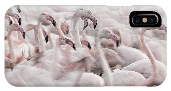 Crowd iPhone Case - In The Pink Transhumance by Martine Benezech