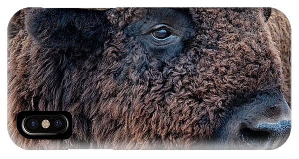 IPhone Case featuring the photograph Olena Art Bison The Mighty Beast Bison Das Machtige Tier North American Wildlife  by OLena Art Brand
