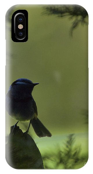 In The Shadows IPhone Case