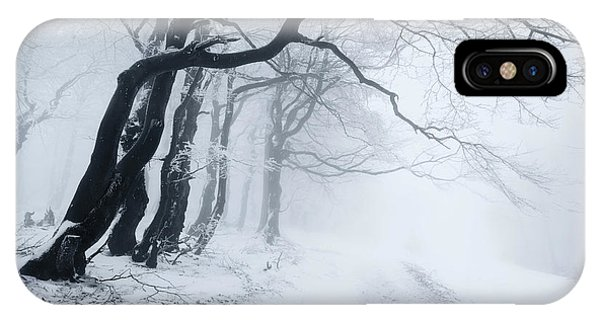 Mist iPhone Case - In The Winter Forest by Daniel ??e??icha