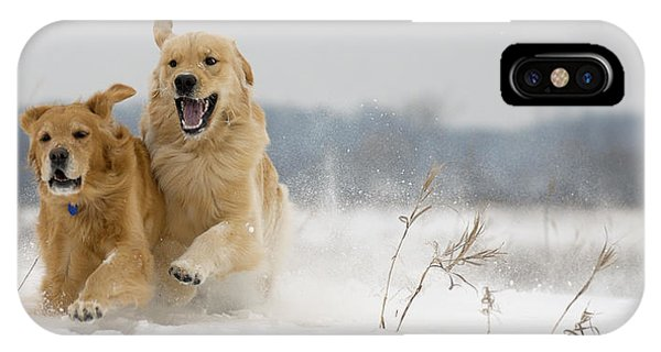 In Their Element IPhone Case