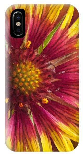 Indian Blanket IPhone Case