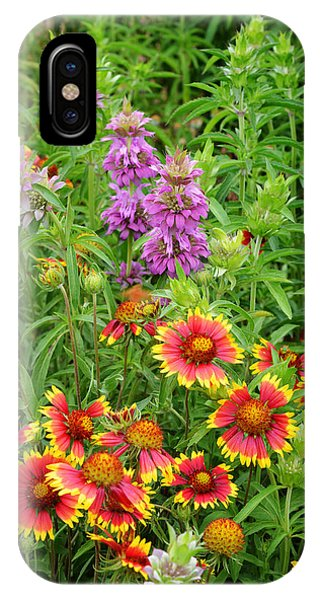 Indian Blankets And Lemon Horsemint IPhone Case