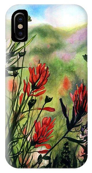 Indian Paint Brush IPhone Case