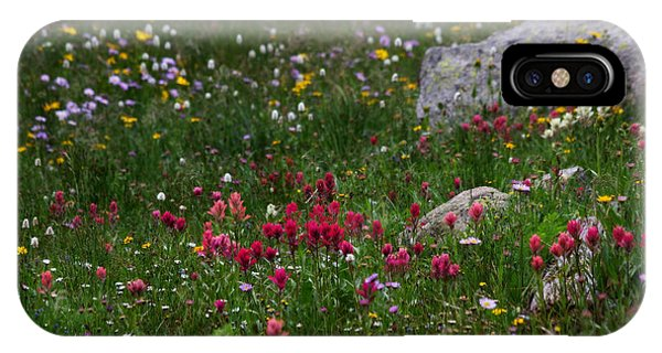 Indian Peaks Wilderness iPhone Case - Indian Paintbrush II by Ronda Kimbrow