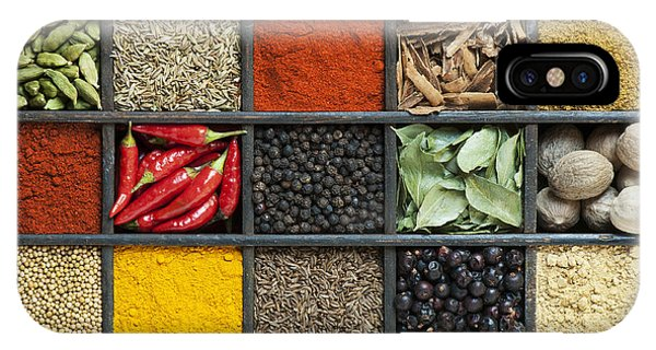 Asia iPhone Case - Indian Spice Grid by Tim Gainey