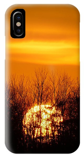 Inferno In The Trees IPhone Case