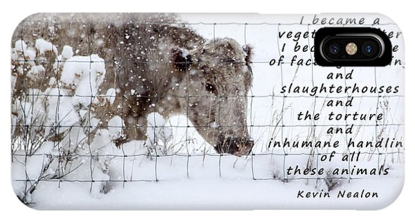 Fairness iPhone Case - Inhumane Torture Of Animals by Janice Pariza