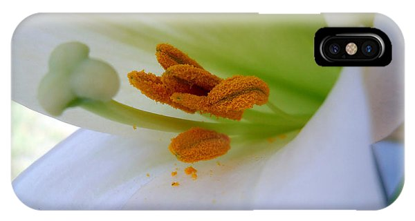 IPhone Case featuring the photograph Inner Secrets by Judy Hall-Folde