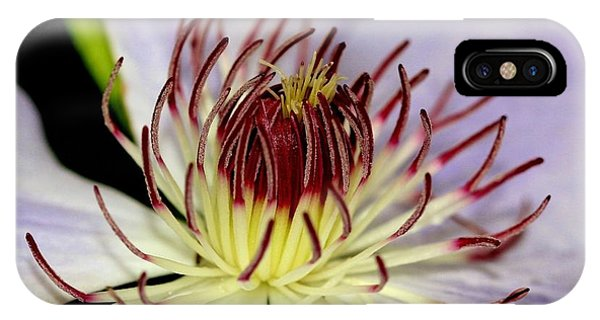 Inside A Clematis IPhone Case