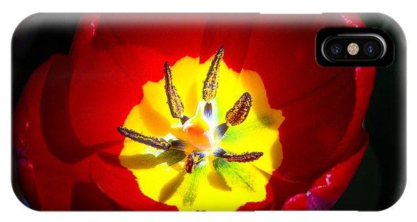 Inside A Tulip IPhone Case