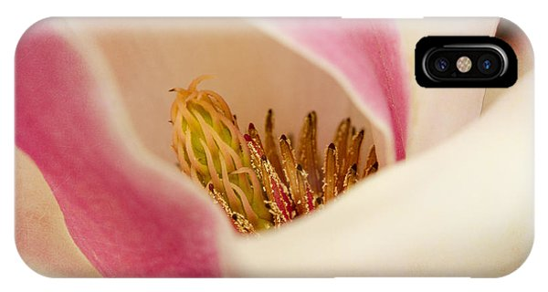 Inside A Tulip Tree Blossom IPhone Case