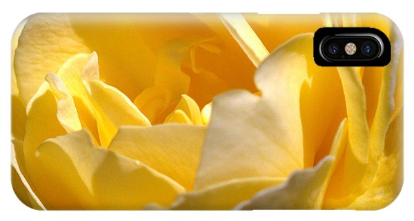 Inside The Yellow Rose IPhone Case