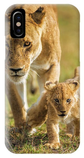 Lion iPhone Case - Into The Future by Mohammed Alnaser