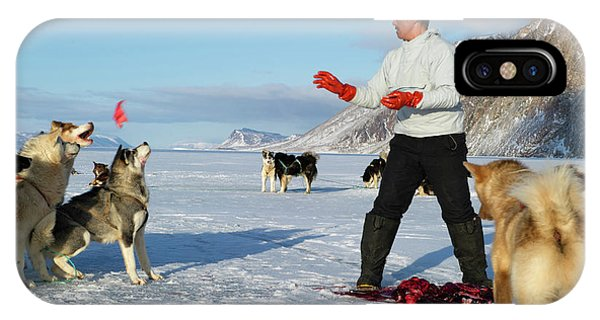 Inuit Hunter Feeding Walrus Meat To Dogs IPhone Case