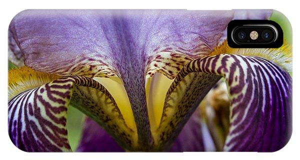 Iris Abstract IPhone Case