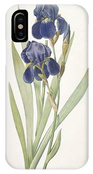 Violet iPhone Case - Iris Germanica Bearded Iris by Pierre Joseph Redoute