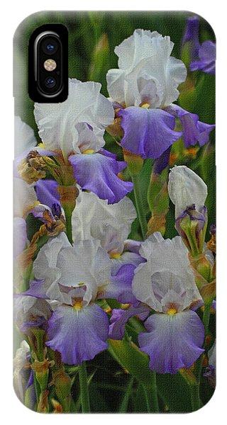 Iris Patch At The Arboretum IPhone Case
