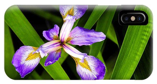 Iris Pinwheel IPhone Case