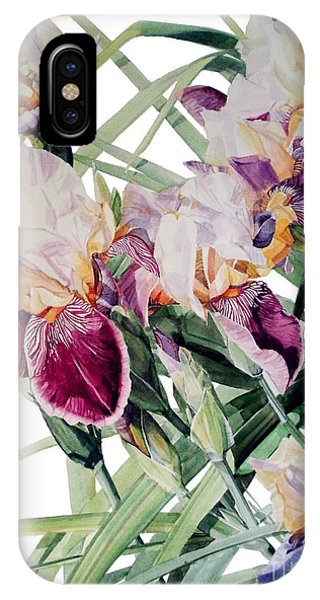 Watercolor Of Tall Bearded Irises I Call Iris Vivaldi Spring IPhone Case