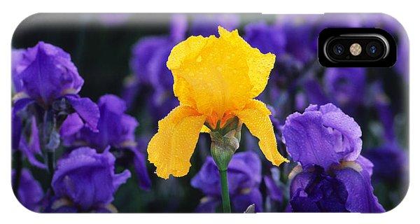 Iris Xxiii IPhone Case