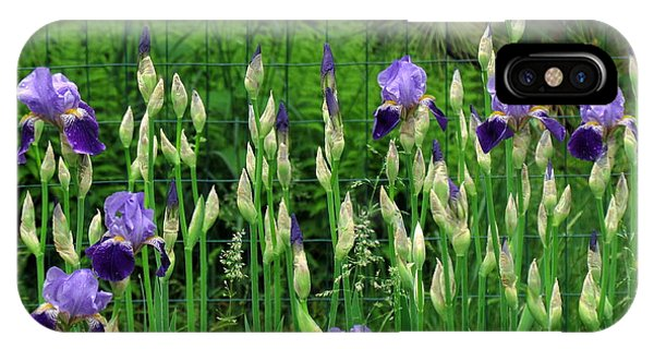 Irises Along The Fence IPhone Case