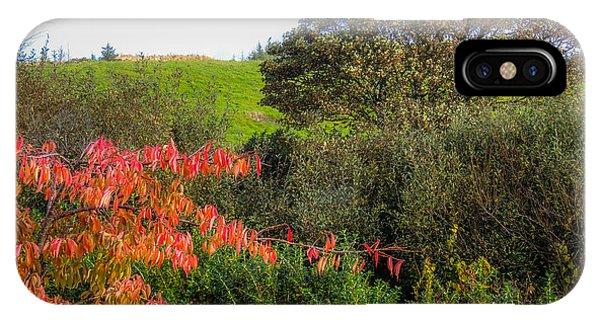 Irish Autumn Countryside IPhone Case