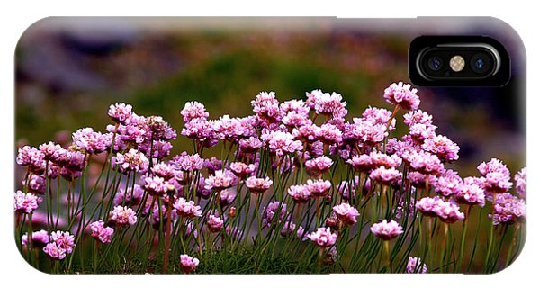 Irish Sea Pinks IPhone Case