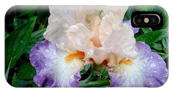 Irresistible Iris IPhone Case
