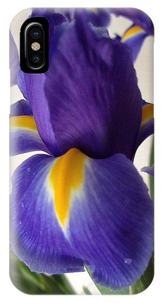 iRus  IPhone Case