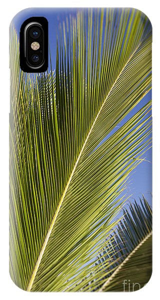 IPhone Case featuring the photograph Isabel Beach In Puerto Rico Palm Trees Against Blue Sky by Bryan Mullennix