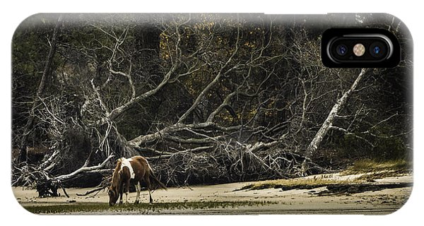 Island Pony IPhone Case