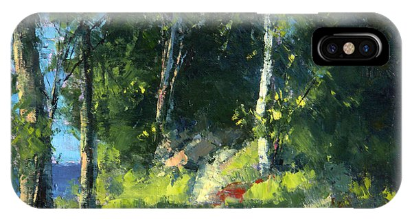 Isle Royale A Trail Near The Lake Phone Case by Tom Nelson
