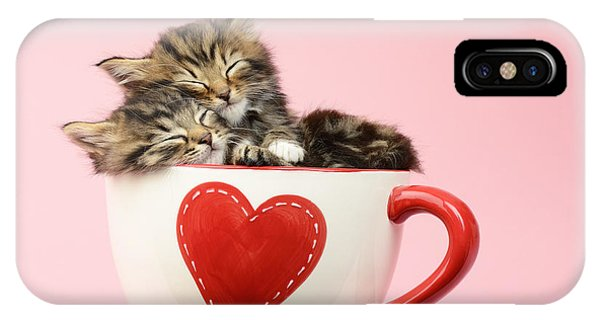 Valentines Day iPhone X Case - It Must Be Love by MGL Meiklejohn Graphics Licensing