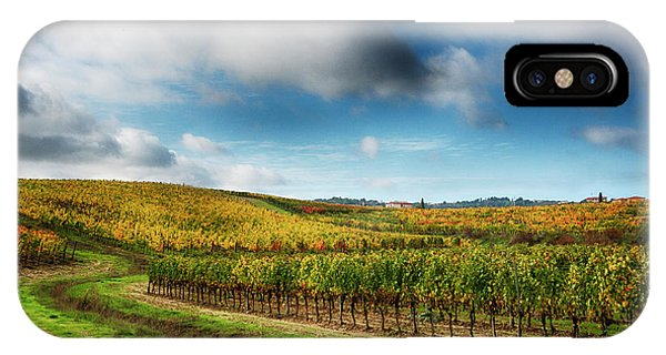 Italy, Montepulciano, Autumn Vineyard Phone Case by Terry Eggers