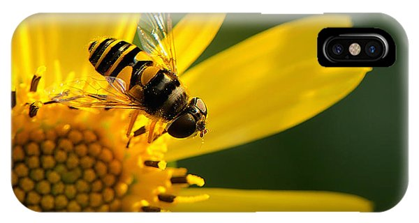 Its A Bees Life IIi Phone Case by Kathi Isserman