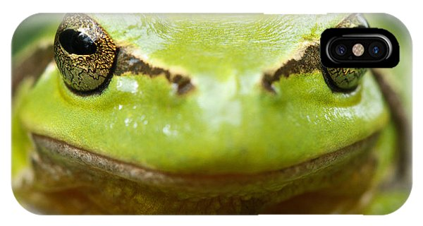 Frogs iPhone Case - It's Not Easy Being Green _ Tree Frog Portrait by Roeselien Raimond